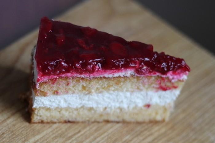 torta-od-sira-i-visanja-2